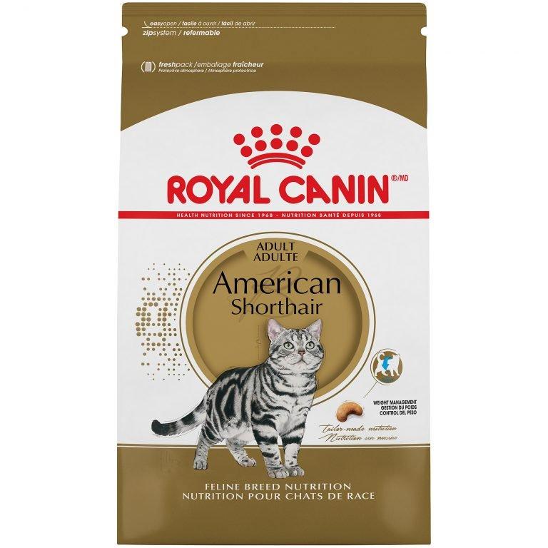 Royal Canin Feline Breed Nutrition American Shorthair Adult Dry Cat Food