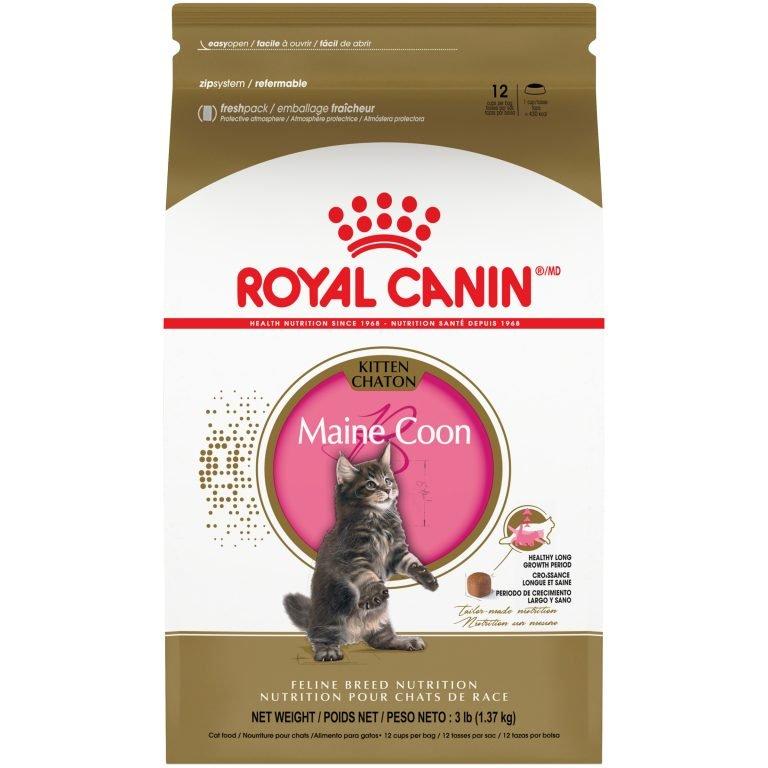 Royal Canin Feline Breed Nutrition Maine Coon Dry Kitten Food